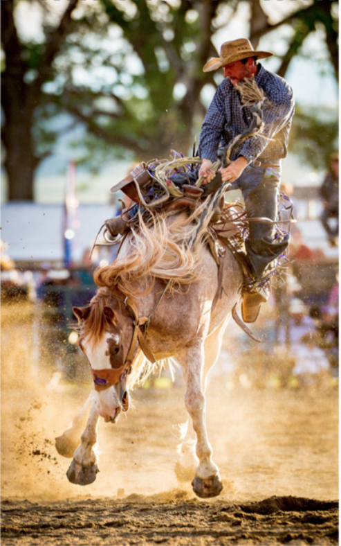 Mark's Rodeo Calendar Cover.png