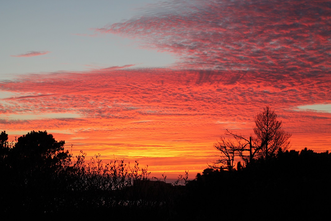 Sunset on the Mendocino Coast in September, 2018. Photo: J. Waits/Waits-Mast Family Cellars