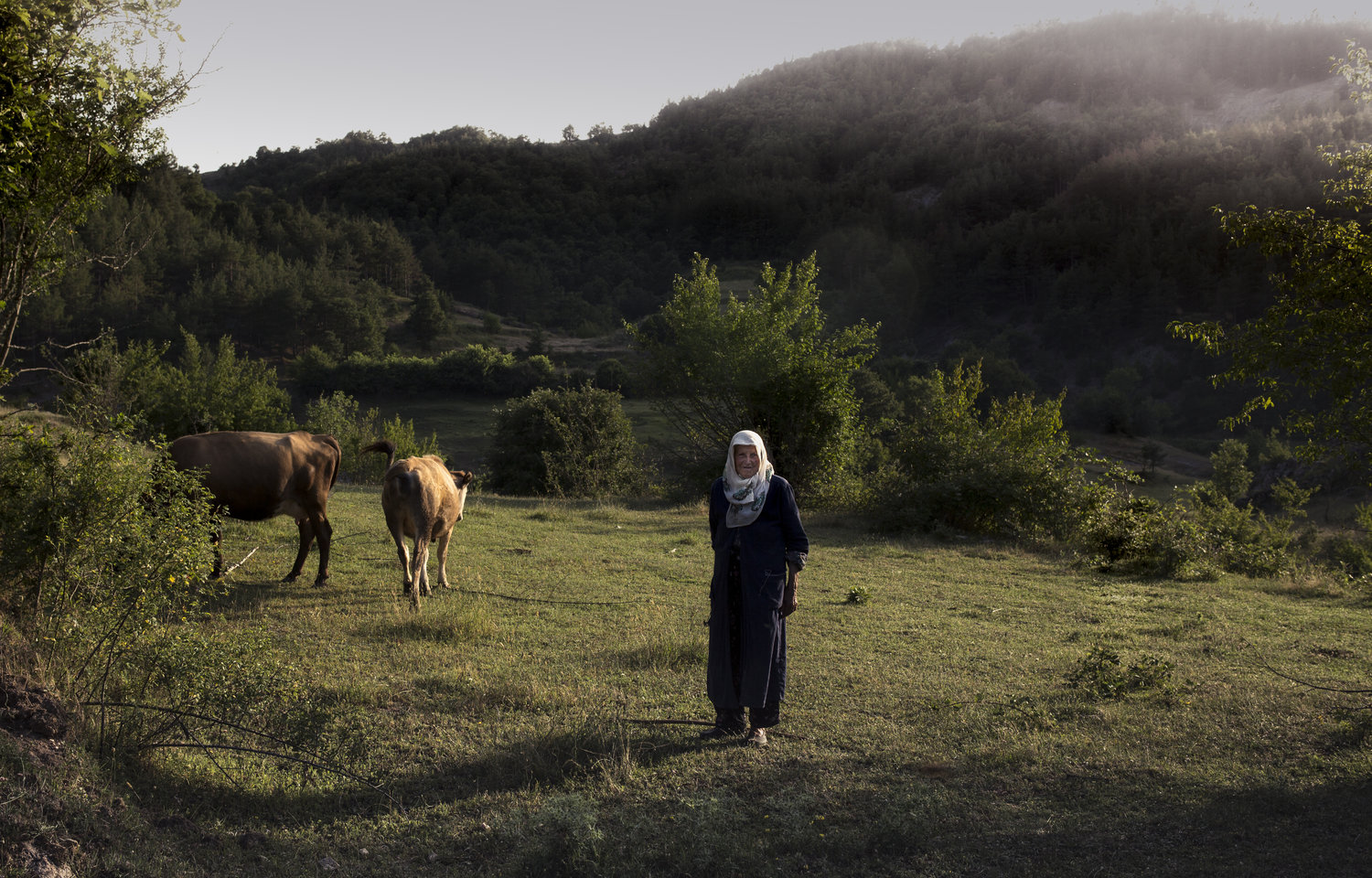 A shepherd tends to her cattle outside of the Pomak village of Kushla in Southern Bulgaria in June 2017. The Pomak people are a Muslim minority group of Slavic descent residing in Greece and Bulgaria since the fall of the Ottoman Empire.