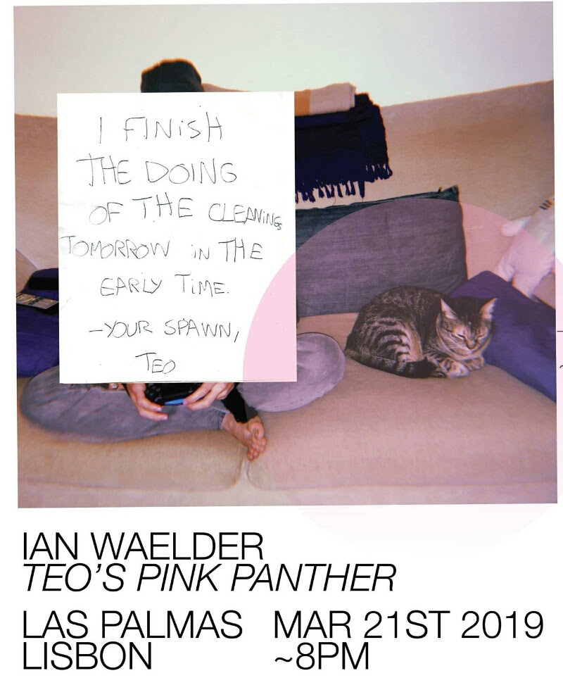 IAN WAELDER - Teo's Pink Phanter, the amazing solo show by Spanish-american artist Ian Waelder will open March 21st at 8pm. On view until April 11th!