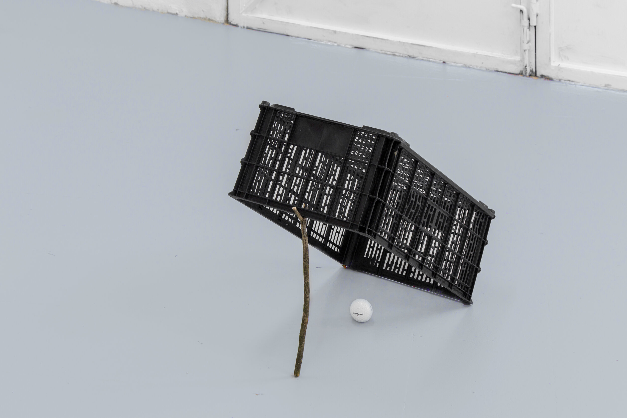 Armadilha para ricos,  2019 Plastic box, wood stick and golf ball 45 x 45 x 30 cm