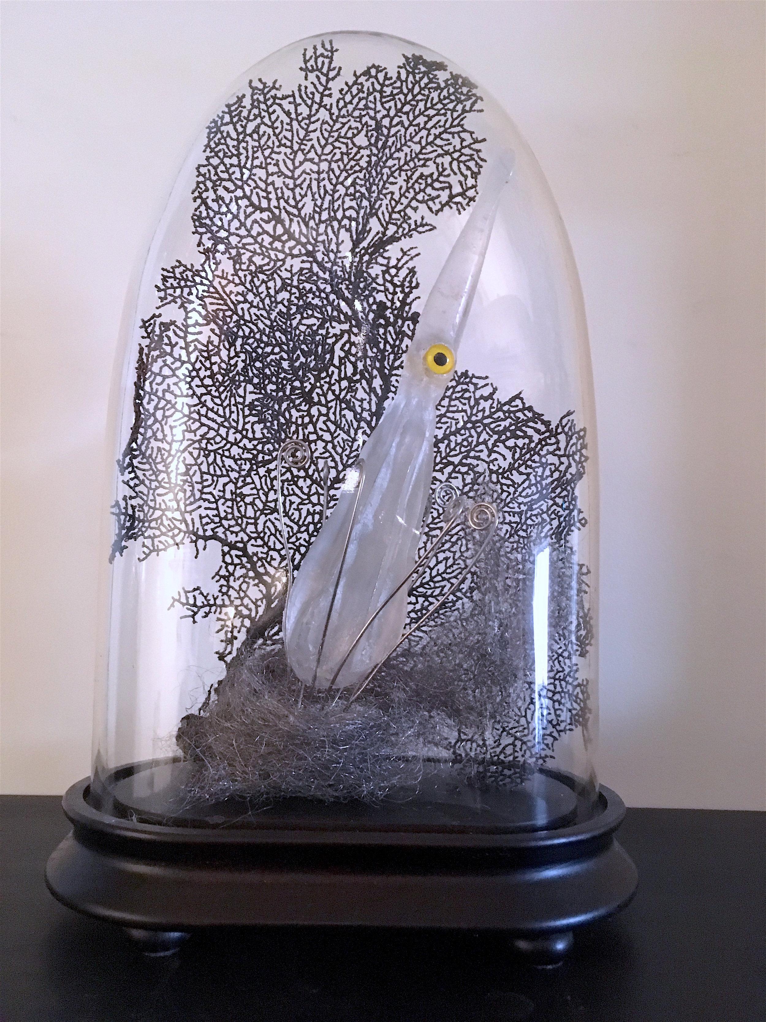 """Captured Squid, cast glass, 16"""""""