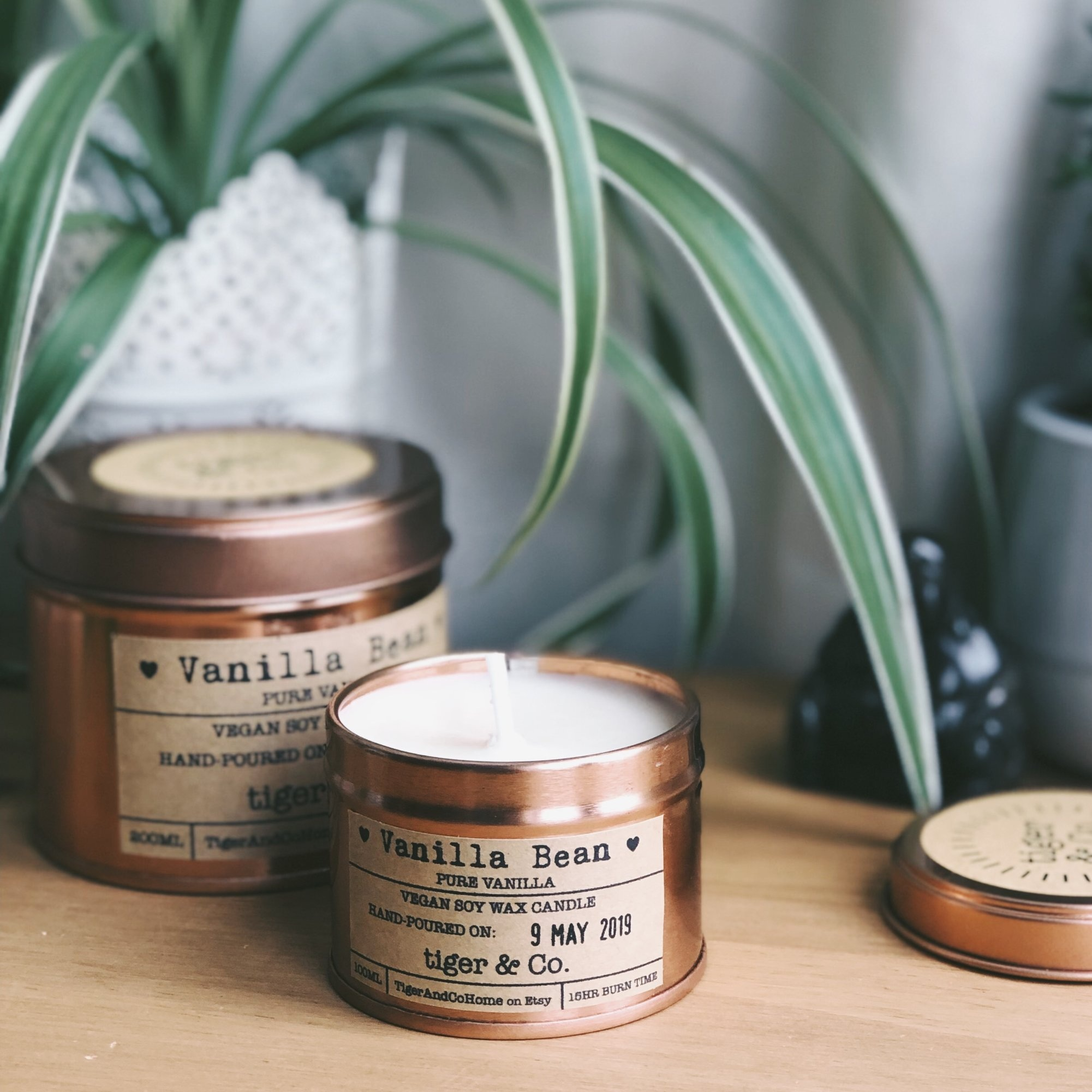 TIGER & CO. - SOY WAX CANDLES ANDSLOW HOMEWARE