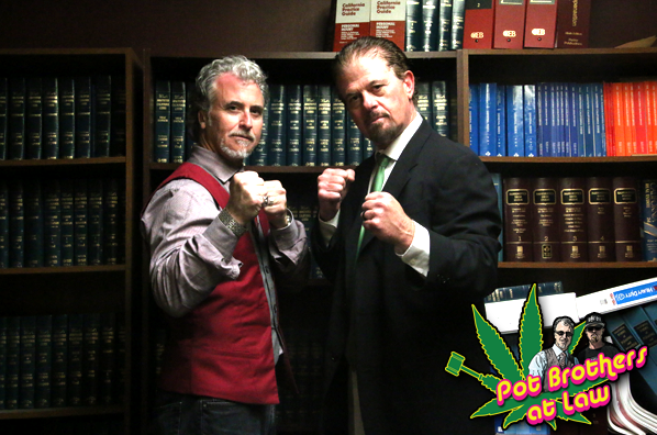 marijuana_lawyers-2.png