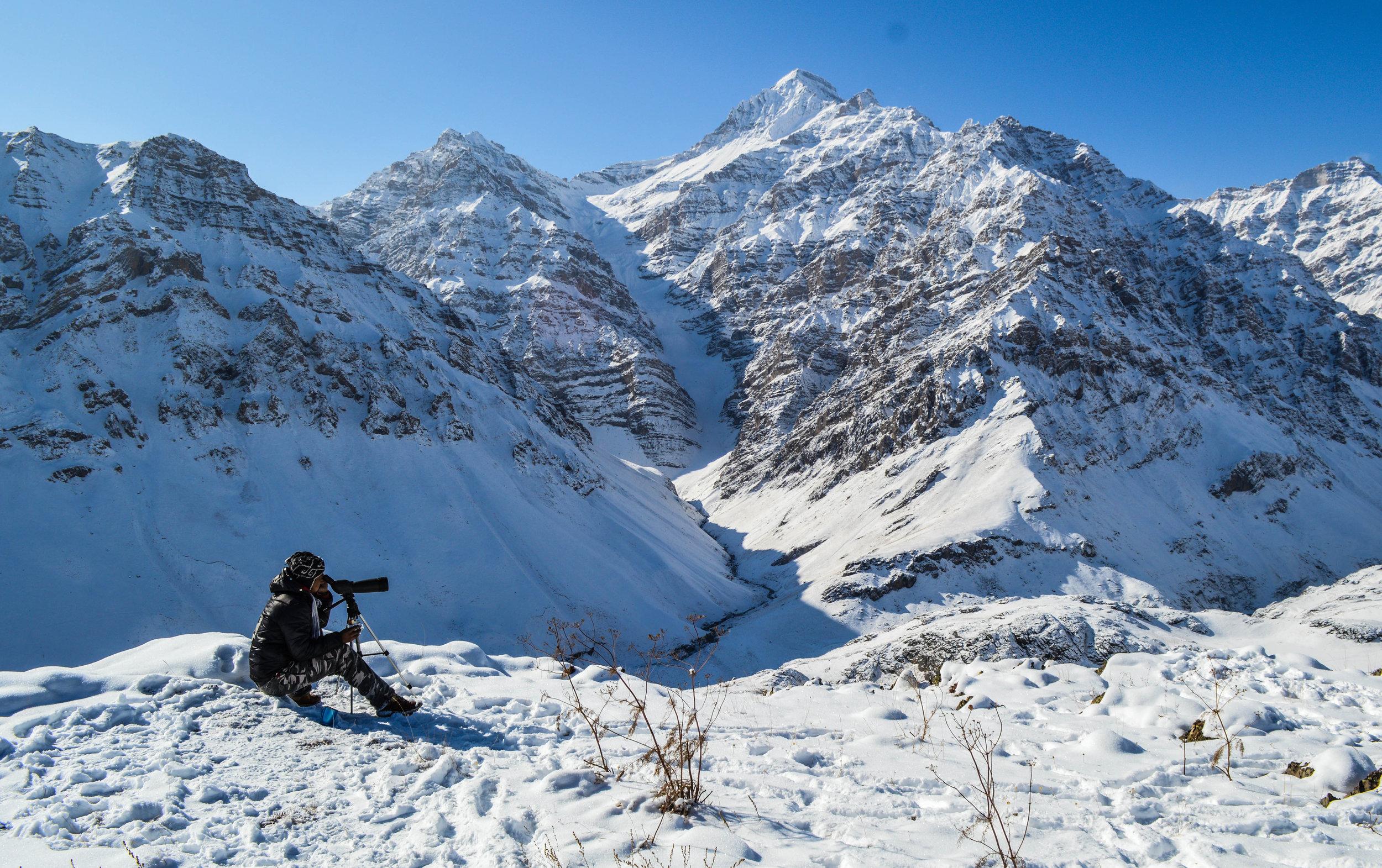 Himalayan Brown Bear Camp -