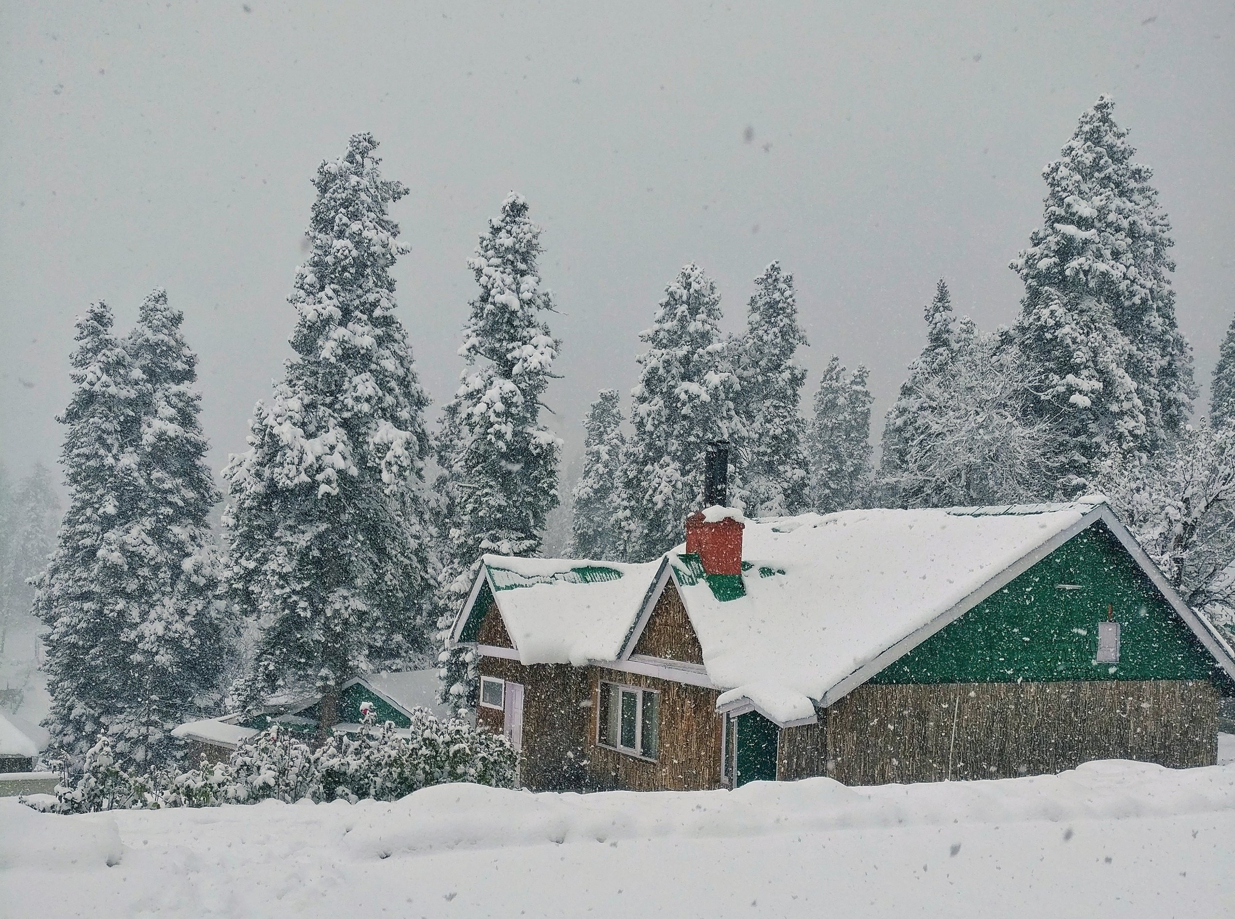 Want to witness a Snow fall ? -