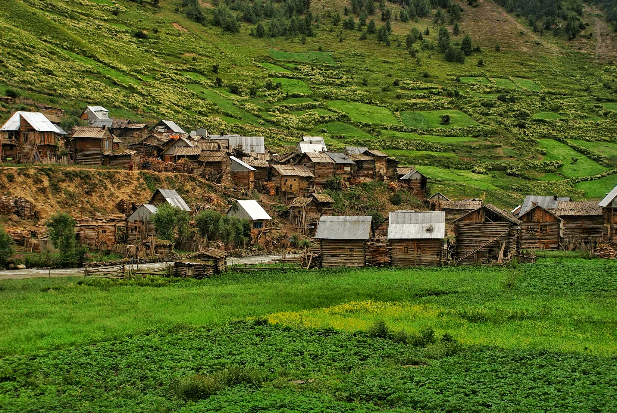 A typical Village in Gurez with most houses constructed out of Wooden logs.
