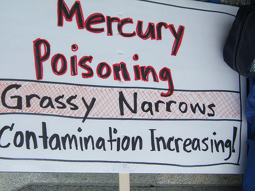 grassy_narrows_2.jpg