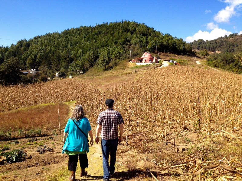 Heather and MJ walking through the cornfields, up the hill to Greg & Heather's home