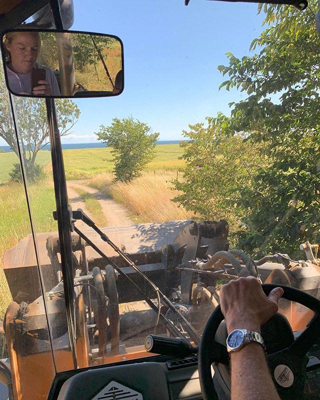 Ia unwittingly takes her first selfie.⠀ ⠀ #gramsgård #gramsgard #visitskåne #visitösterlen #österlen #visitsweden #simrishamn #balticsea #skåneleden #stfturist #schweden #accidentalselfie #farmlife