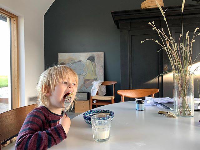 Contemplating the day ahead. #gramsgård #gramsgard #visitskåne #visitösterlen #österlen #visitsweden #simrishamn #balticsea #skåneleden #stfturist #schweden