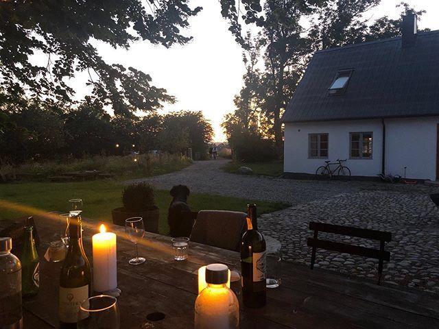 Sigge doesn't like goodbyes.⠀ ⠀ #gramsgård #gramsgard #visitskåne #visitösterlen #österlen #visitsweden #simrishamn #balticsea #skåneleden #stfturist #schweden