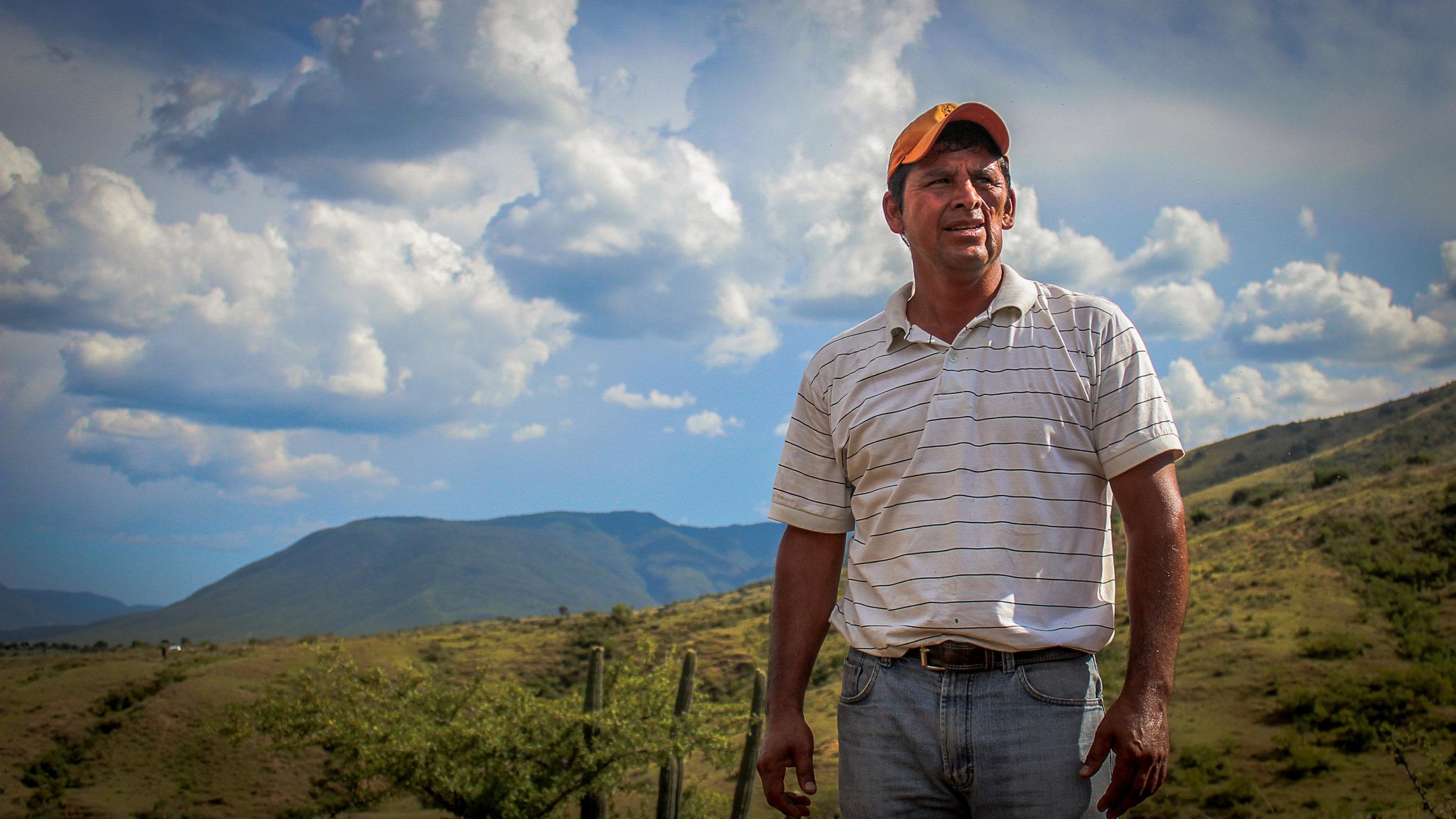 Maestro Mezcalero Eduardo Javier Ángeles Carreño in the hills above Santa Catarina Minas, Ocotlán, Oaxaca