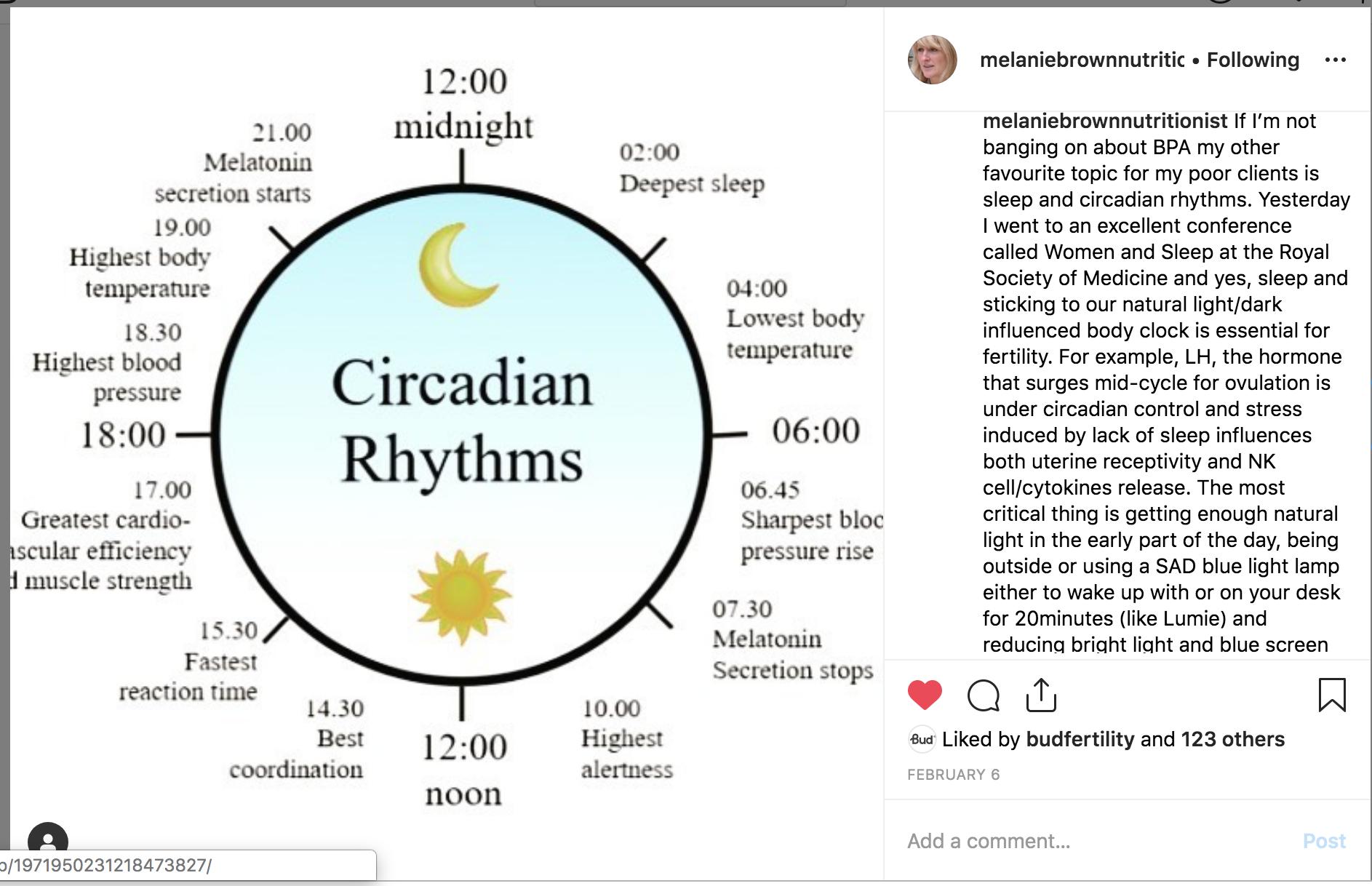 circadian rhythms.png