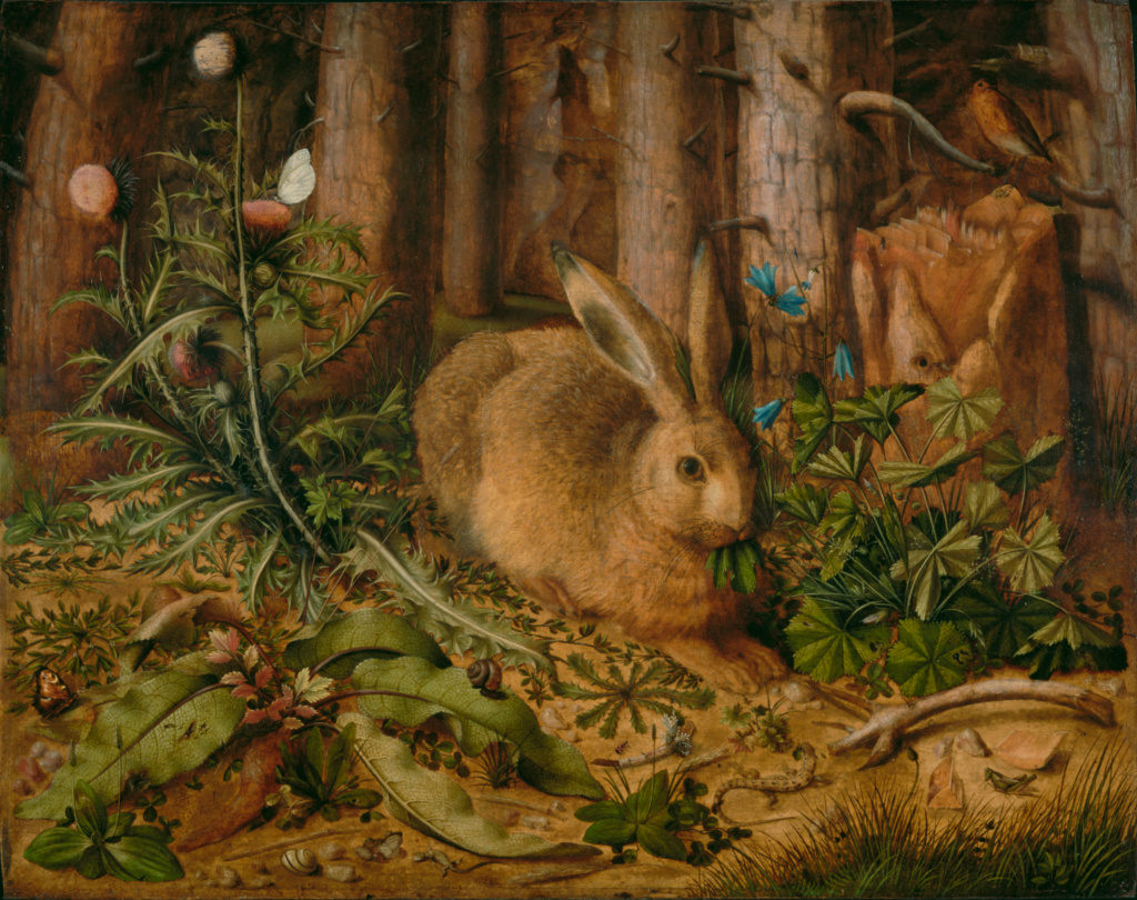 Hans Hoffmann (German, about 1530 - 1591/1592)  A Hare in the Forest , about 1585, Oil on panel 62.2 × 78.4 cm (24 1/2 × 30 7/8 in.), 2001.12 The J. Paul Getty Museum, Los Angeles  Digital image courtesy of the Getty's Open Content Program.   Read more about the painting