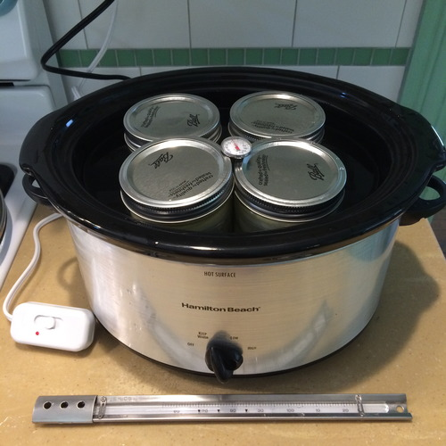 yogurtincrockpot.jpg