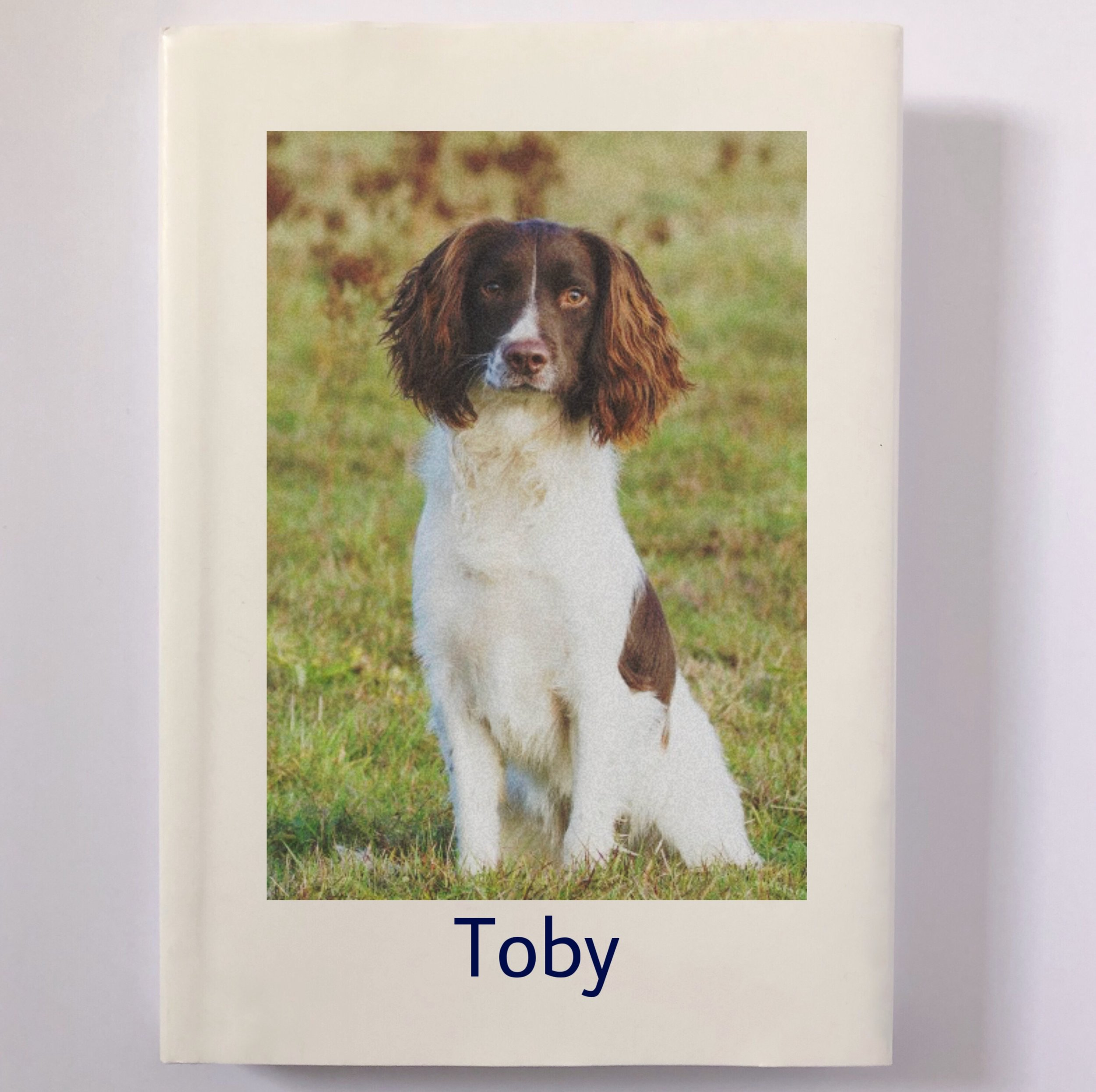 When my dad lost his beloved Spaniel, Toby, due to old age I wanted to find a birthday present for him that would have more of a personal touch. A friend directed me to Yvette's website and together we completed a lovely book about Toby, mentioning all the things he liked to do, his special relationship with my dad, and lots of photos. I also had a portrait commissioned of Toby, completed by the talented Chloe, which captured him remarkably. My dad was overjoyed and the picture hangs in the living room and the book is permanently placed on the coffee table. It's a wonderful present and helped my dad remember the good times with his pal. Yvette is lovely to work with and I really enjoyed completing this special project. Thank you so much. (HS, Leeds)