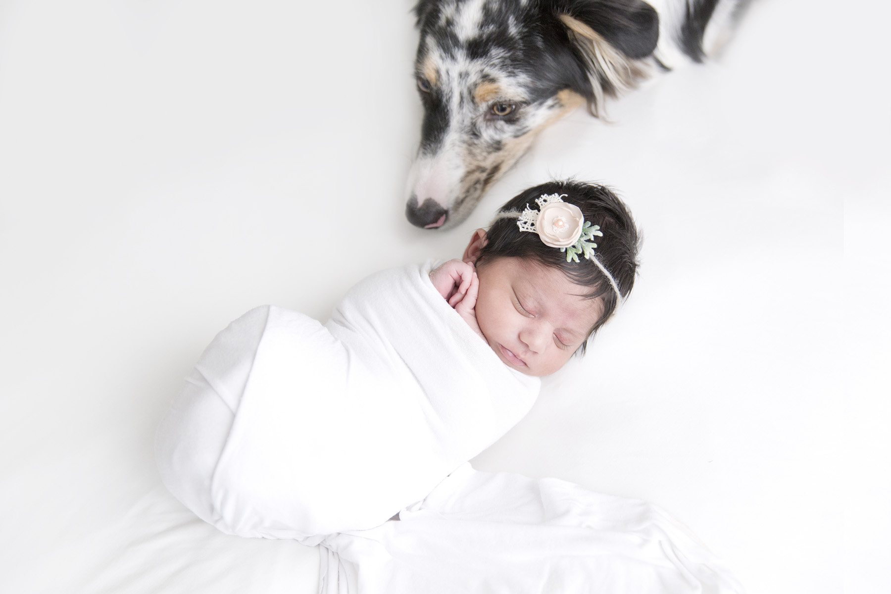 Miami-Newborn-Photographer