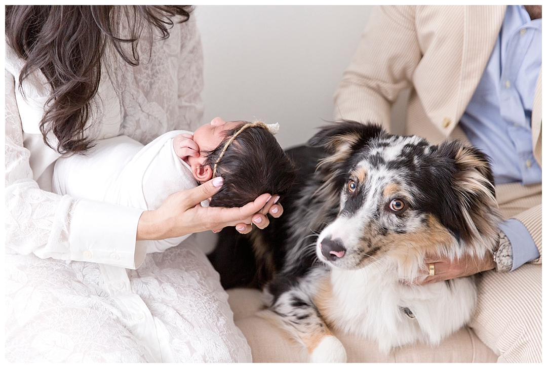 newborn session with puppy | miami newborn photography studio