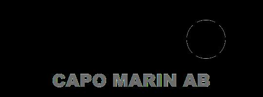 CAPO_logo_BlackOnTransparent_Arial_Black_w_text.png