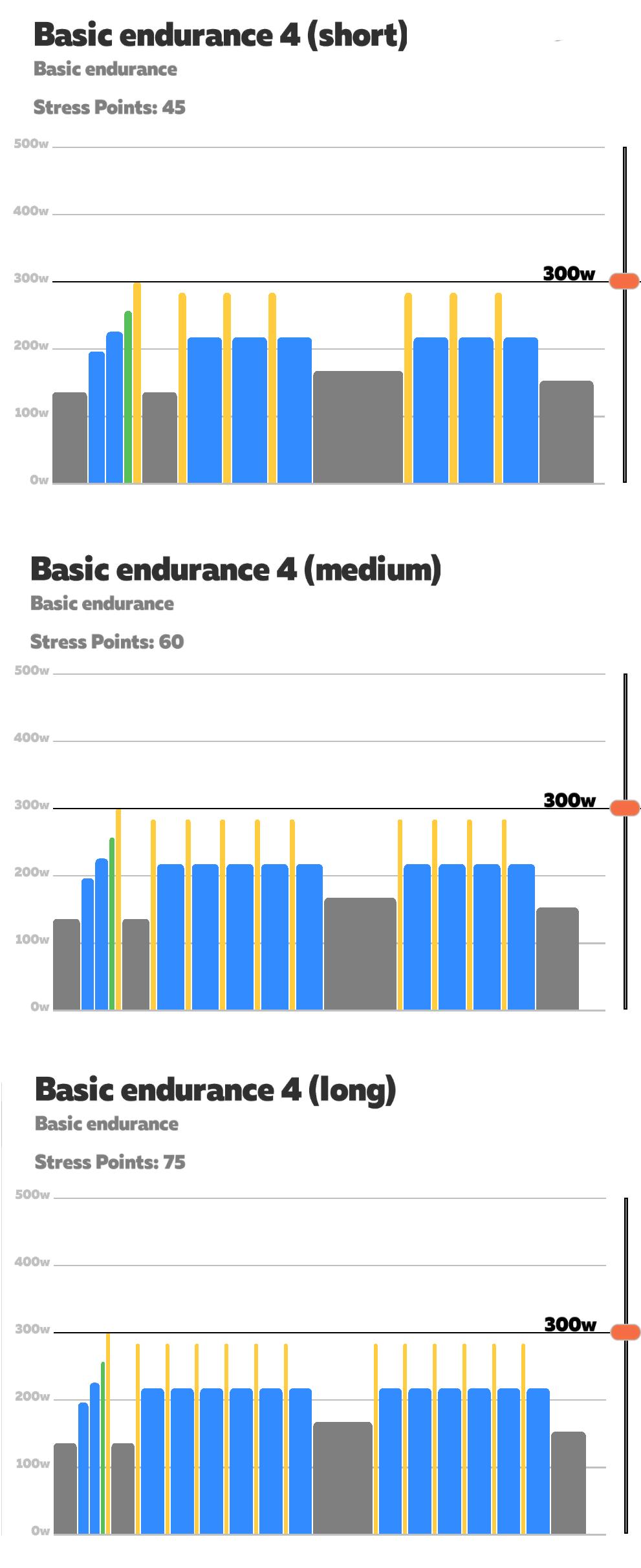 basic_endurance4.png