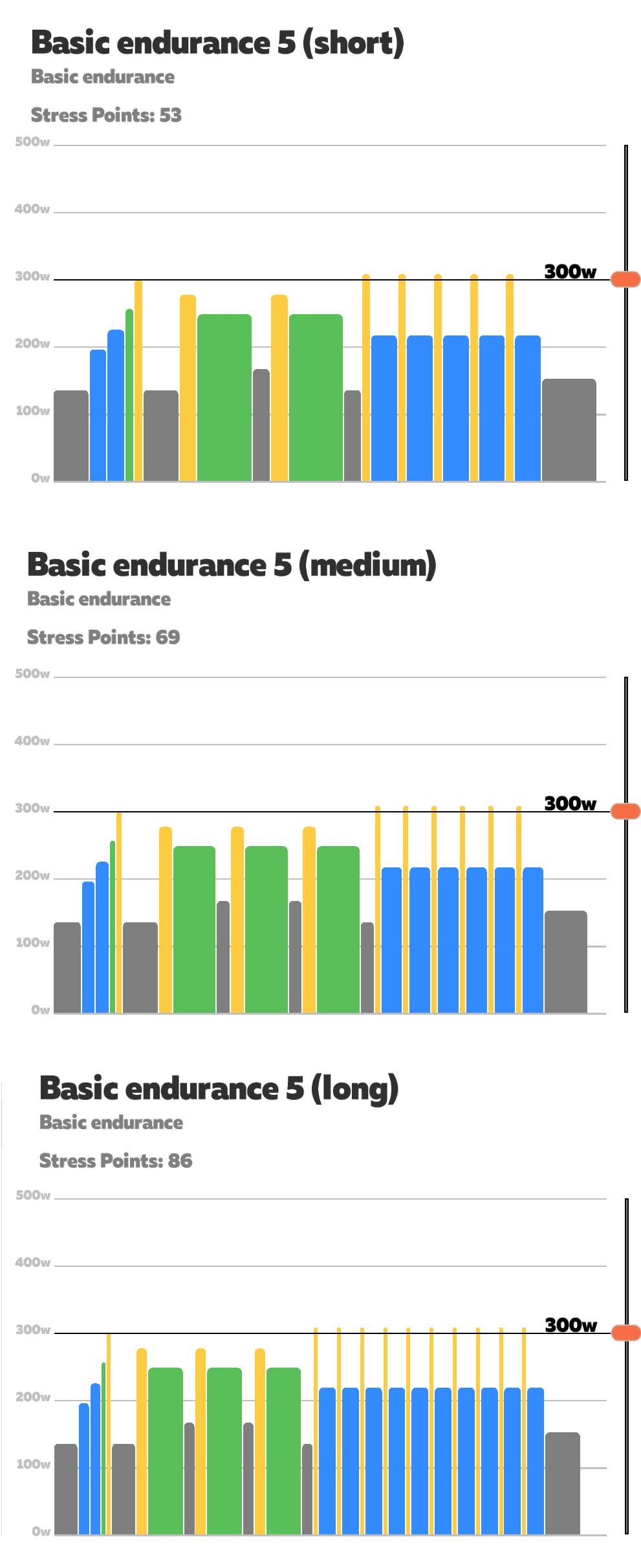 basic_endurance5.png