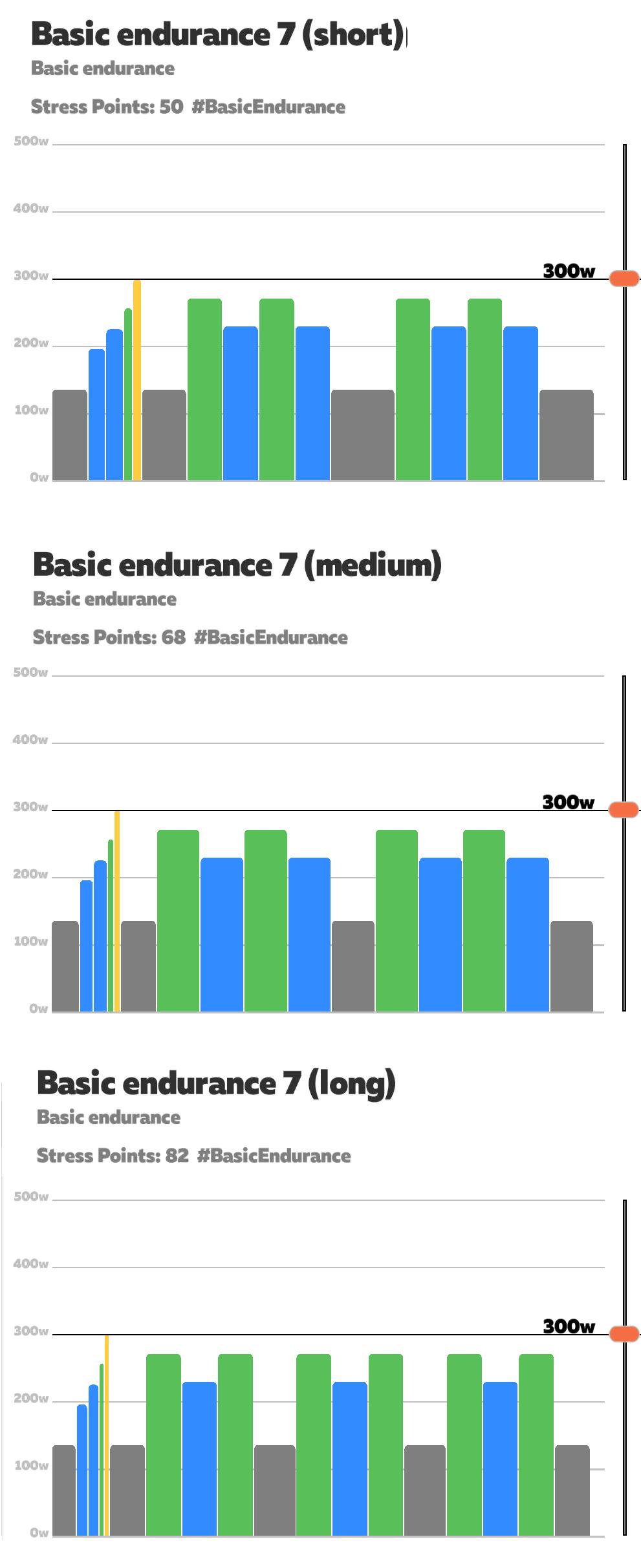 basic_endurance7.png