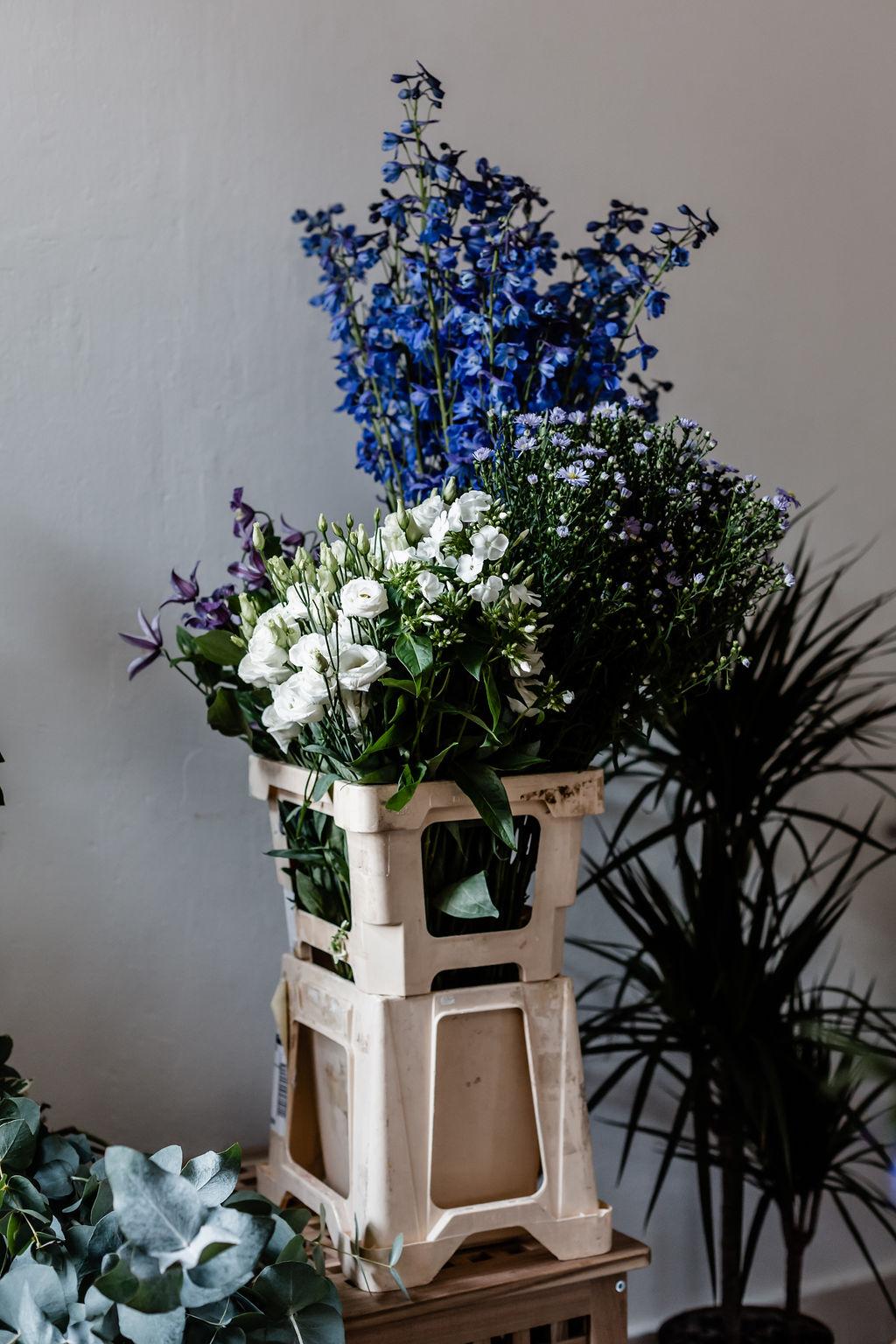 Flowers-52.jpg