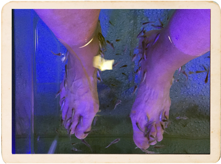 Minnows clean my feet in Mykonos.