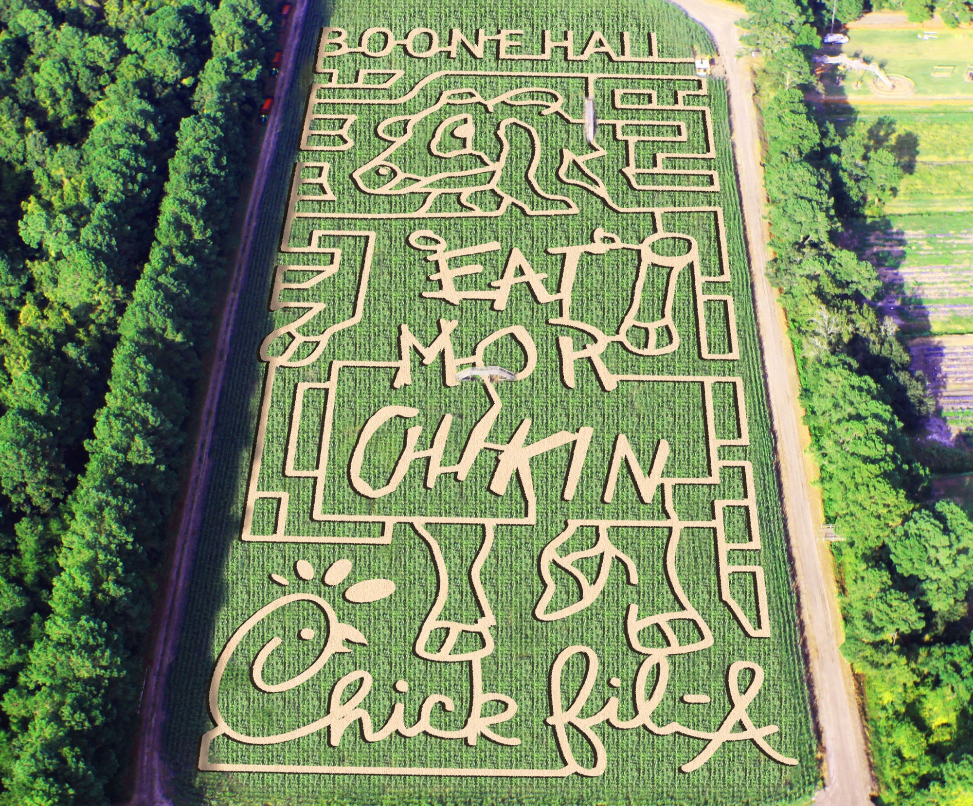 Boone Hall Pumpkin Patch - What: The perfect Halloween destination for families! A HUGE pumpkin patch, corn maze, petting zoo, and more for $12.Details: 2434 US 17, Mt. Pleasant, SC 29464