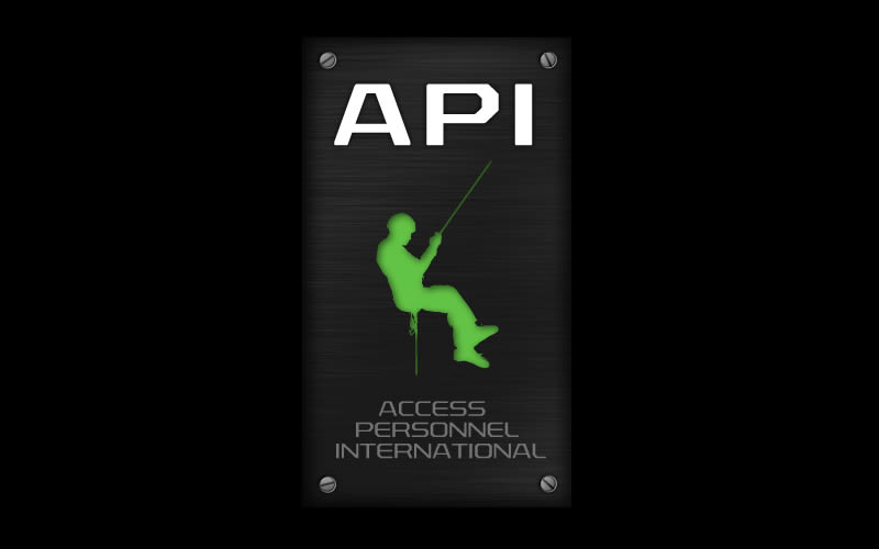 API Access Personnel International Logo