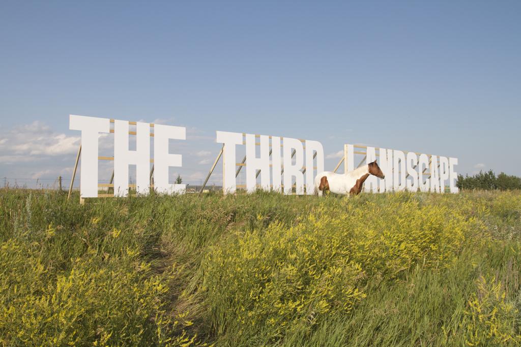 36. thethirdlandscape_jaymosherrorymiddleton2.jpg