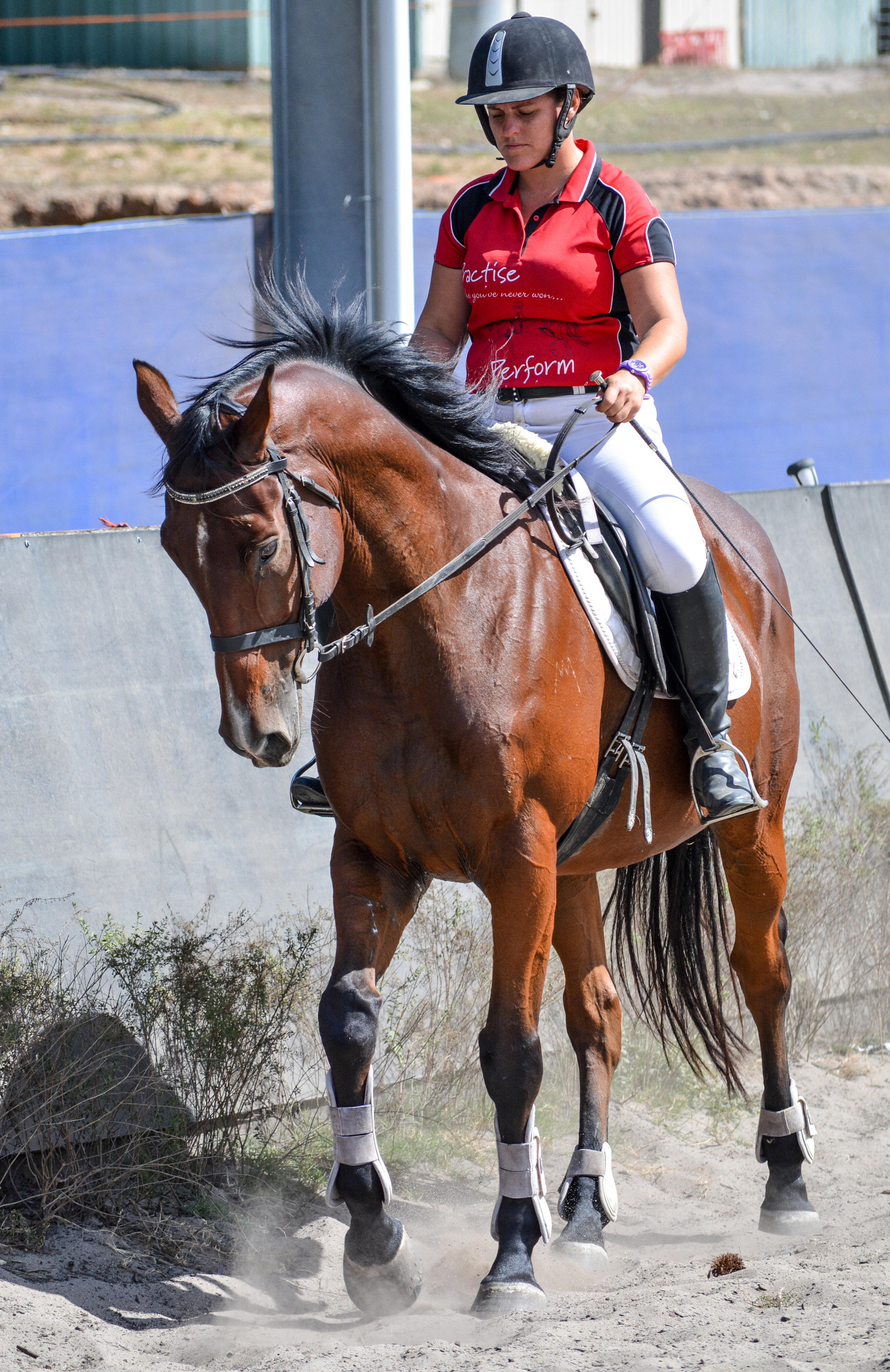 Walking can strengthen your horses core
