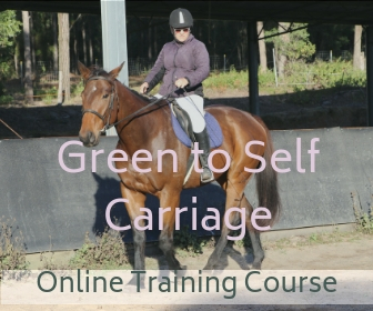 Online training to develop your horse