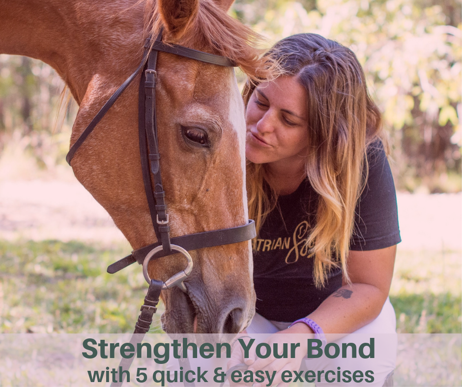 Start showing up as a leader by taking steps to strengthen your bond with your horse - click to access the free guide