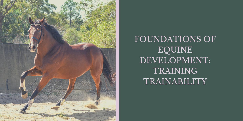 Training Trainability