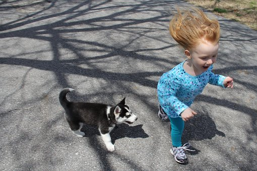 puppy-kid-play.jpg