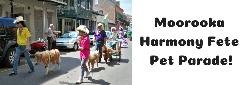 Moorooka Harmony Fete Pet Parade!.png