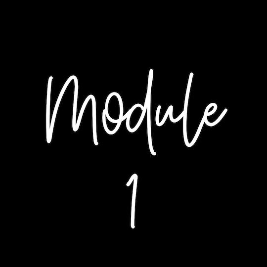Module1.png