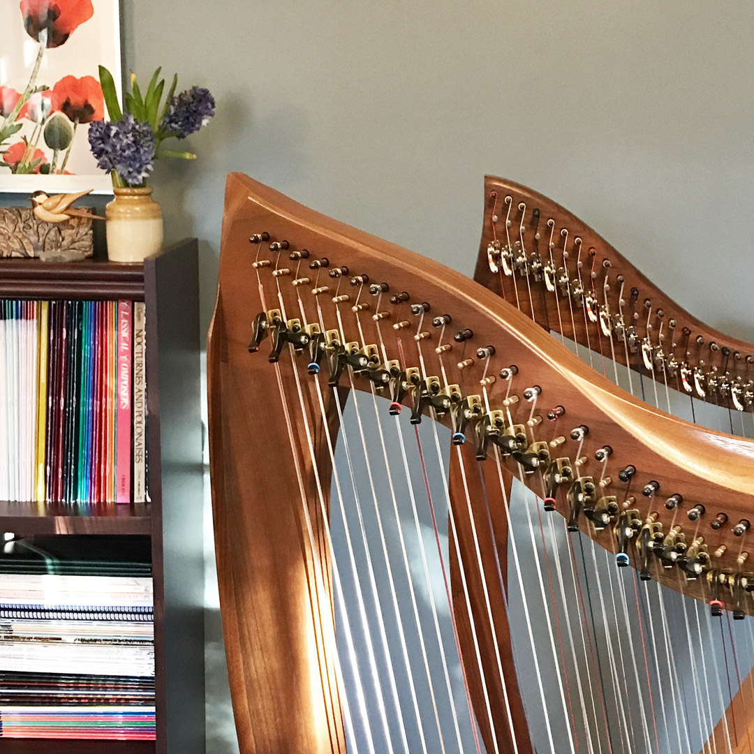 The Harps - My private harp students choose between playing the Dusty Strings FH36S or the Timothy Llyr celtic harp. Both are beautiful, professional instruments. I also have a Dusty Strings 26-string Allegro for students who would like to rent a harp for home practice.