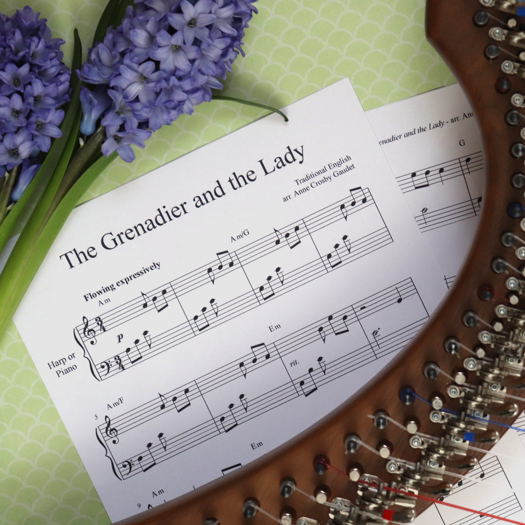 Composer & Publisher - I am devoted to composing and arranging music for both piano and harp. The Music Discoveries Shop is where you will find my piano music for children, expressive harp solos and creative teaching resources.