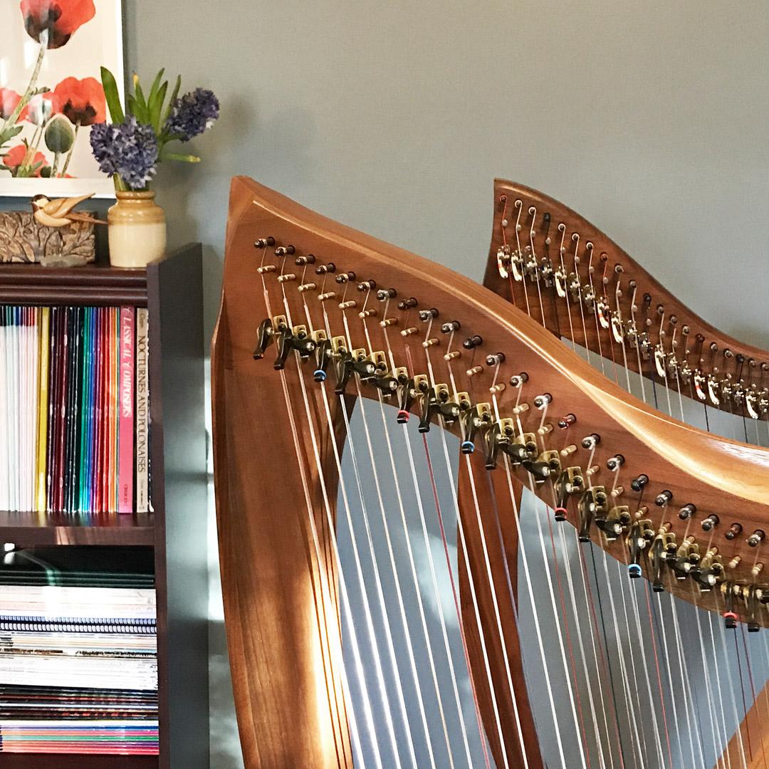 harps-bookshelf.jpg
