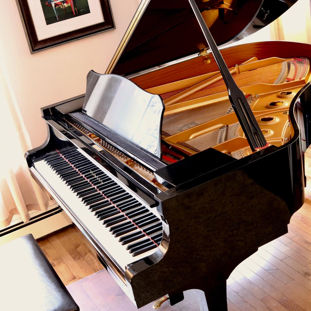 The Pianos - My piano students enjoy playing the Yamaha baby grand piano. This quality instrument encourages students to listen and develop proper technique. We also use the Yamaha Clavinova digital piano, which is fun for adding backing tracks and creative sounds.