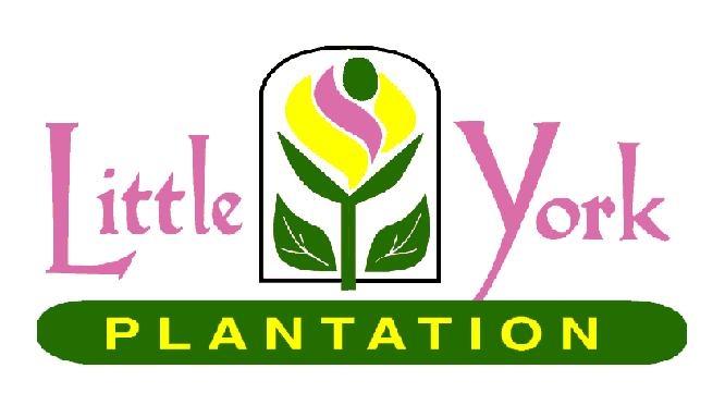 Little York Plantation