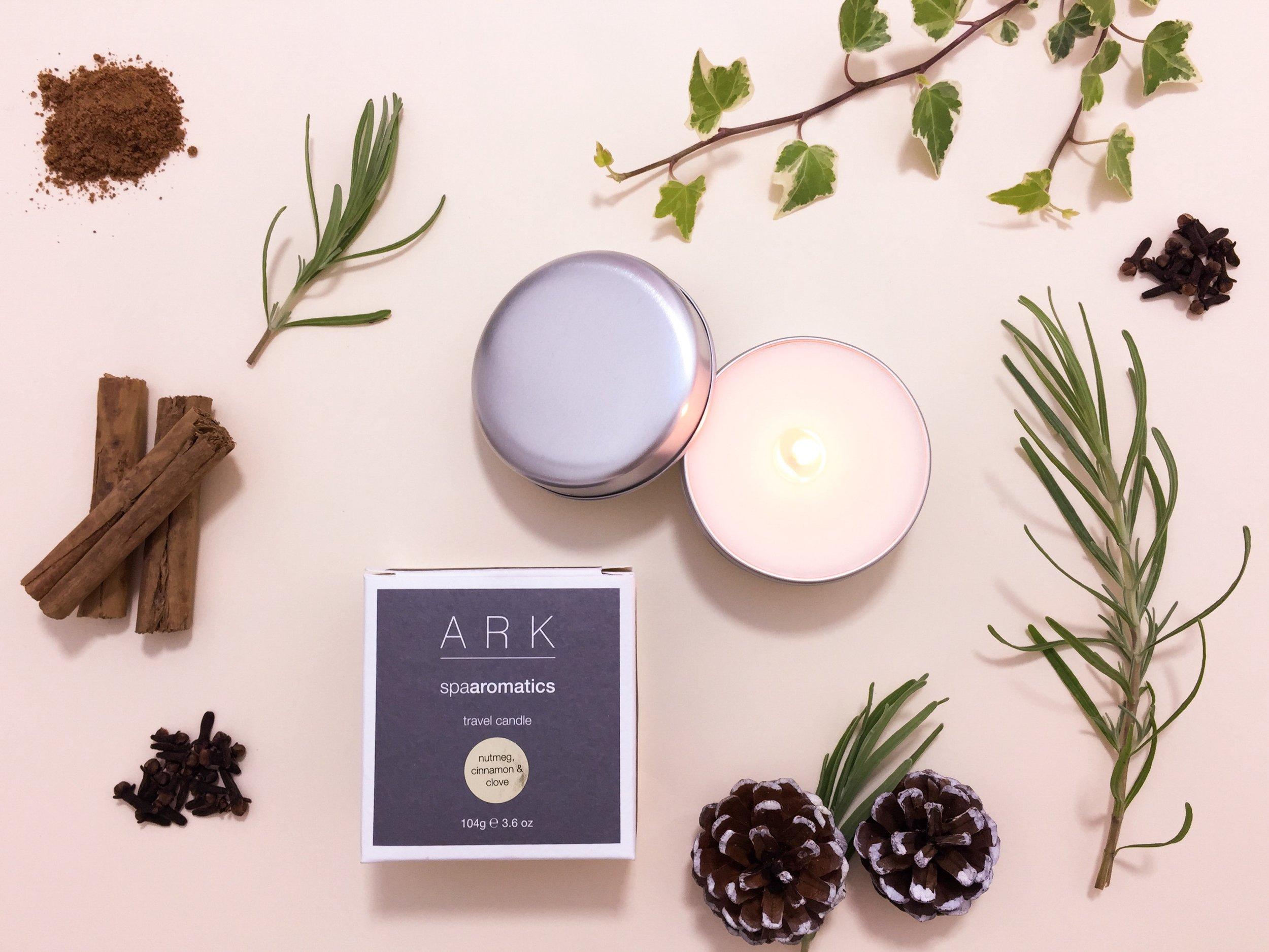 ARK Christmas Candle 1 copy.JPG