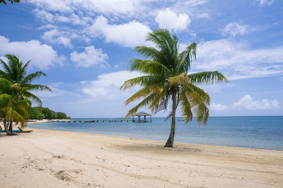 Caribbean    - view -