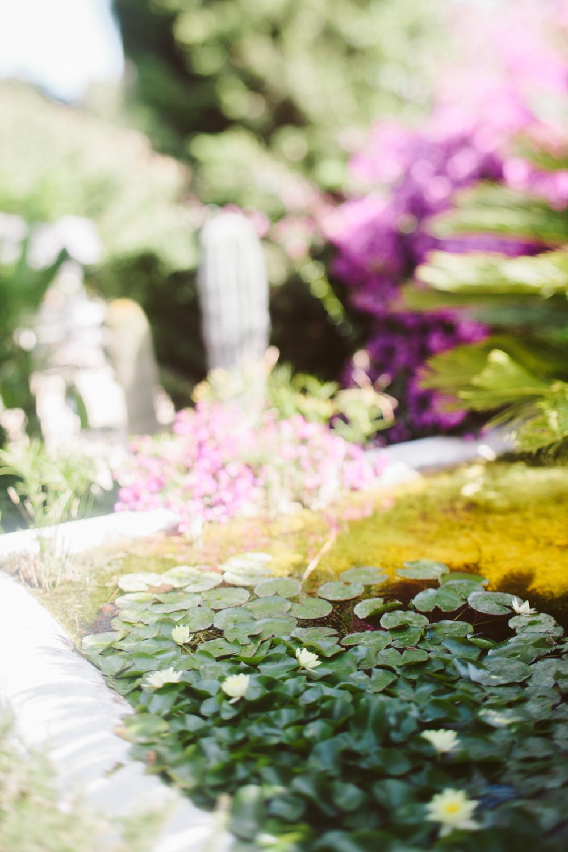 S&C The Wedding 0015© Jimena Roquero Photography.jpg