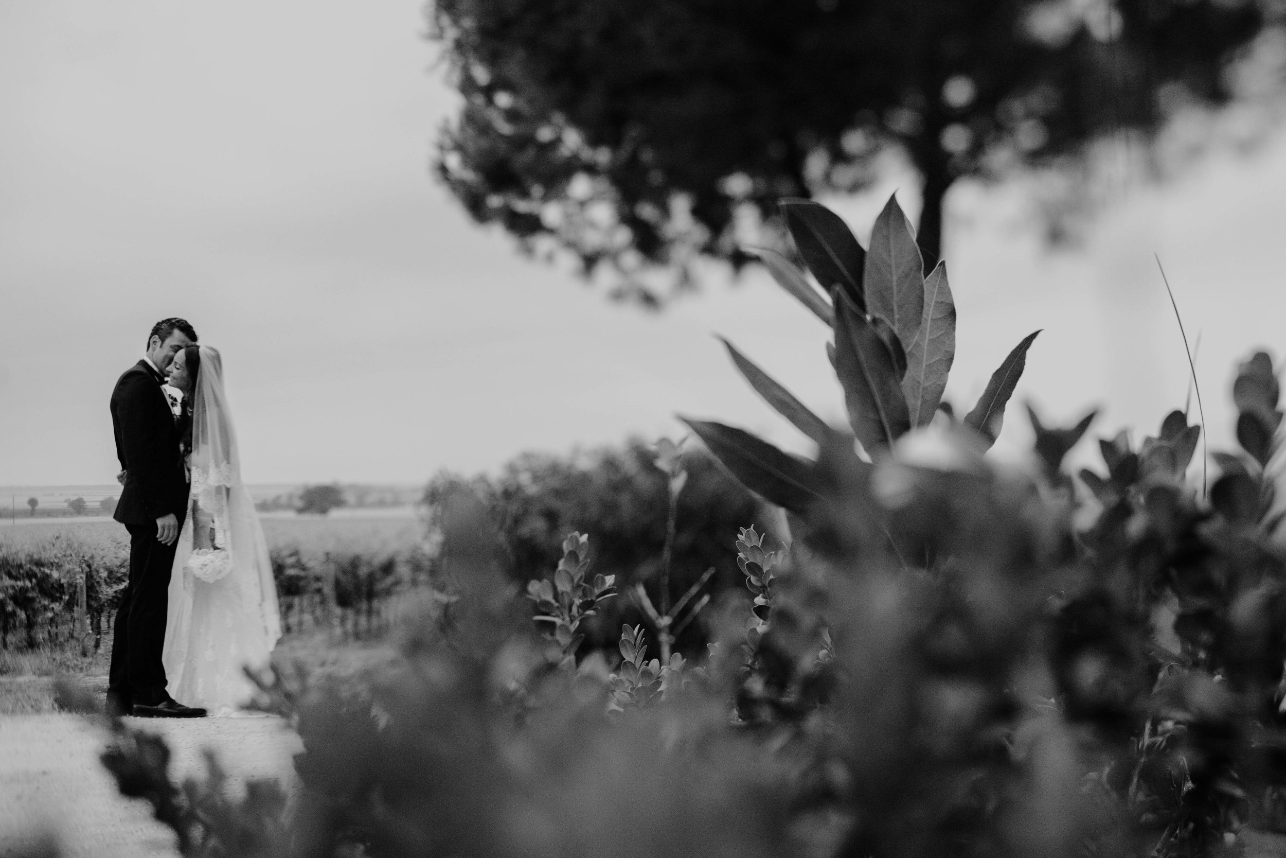 Sylvia & Benjamin 124@Jimena Roquero Photography.jpg