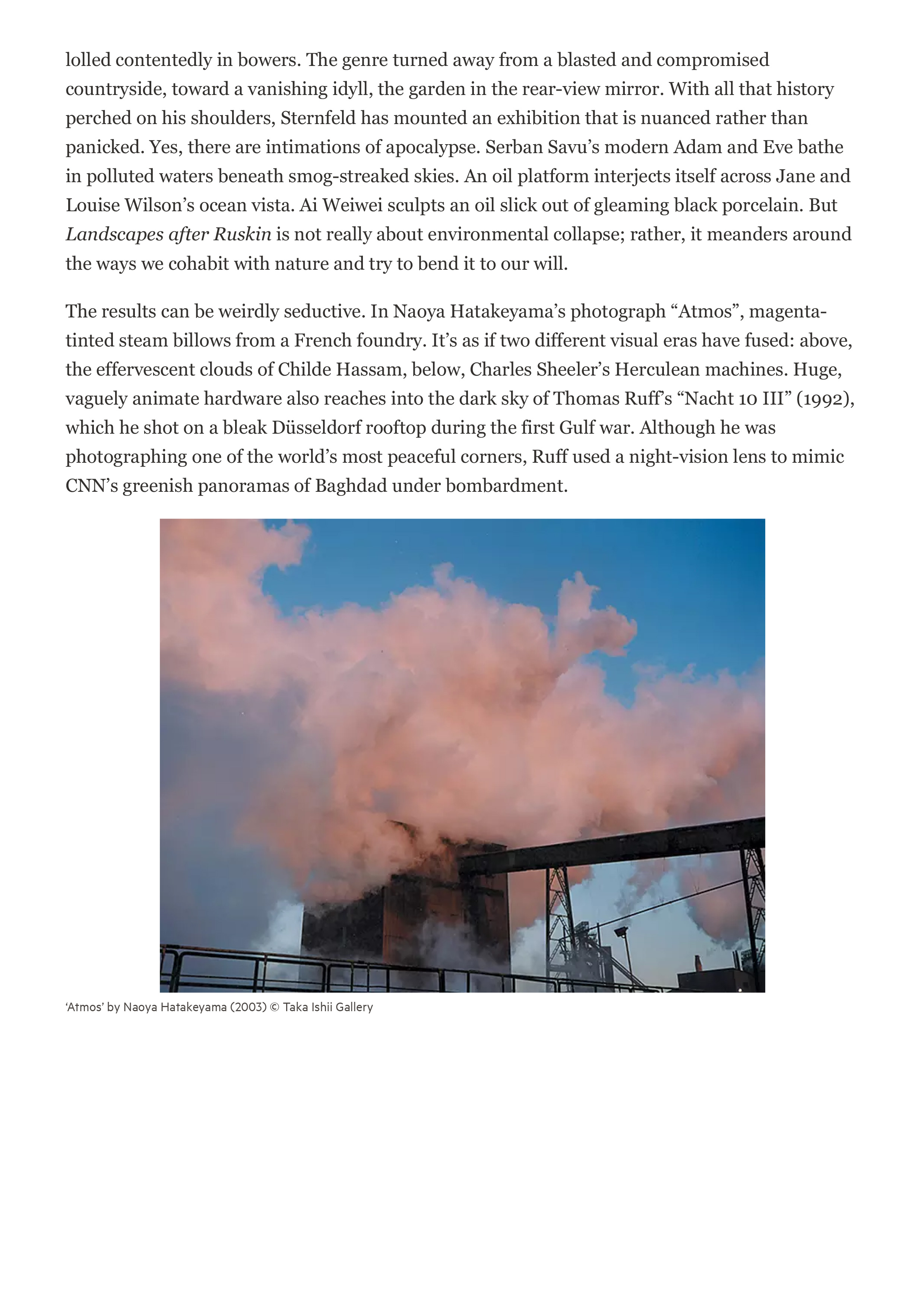 Landscapes-After-Ruskin,-Grey-Art-Gallery,-New-York-—-'distressingly-enchanting'-3.jpg