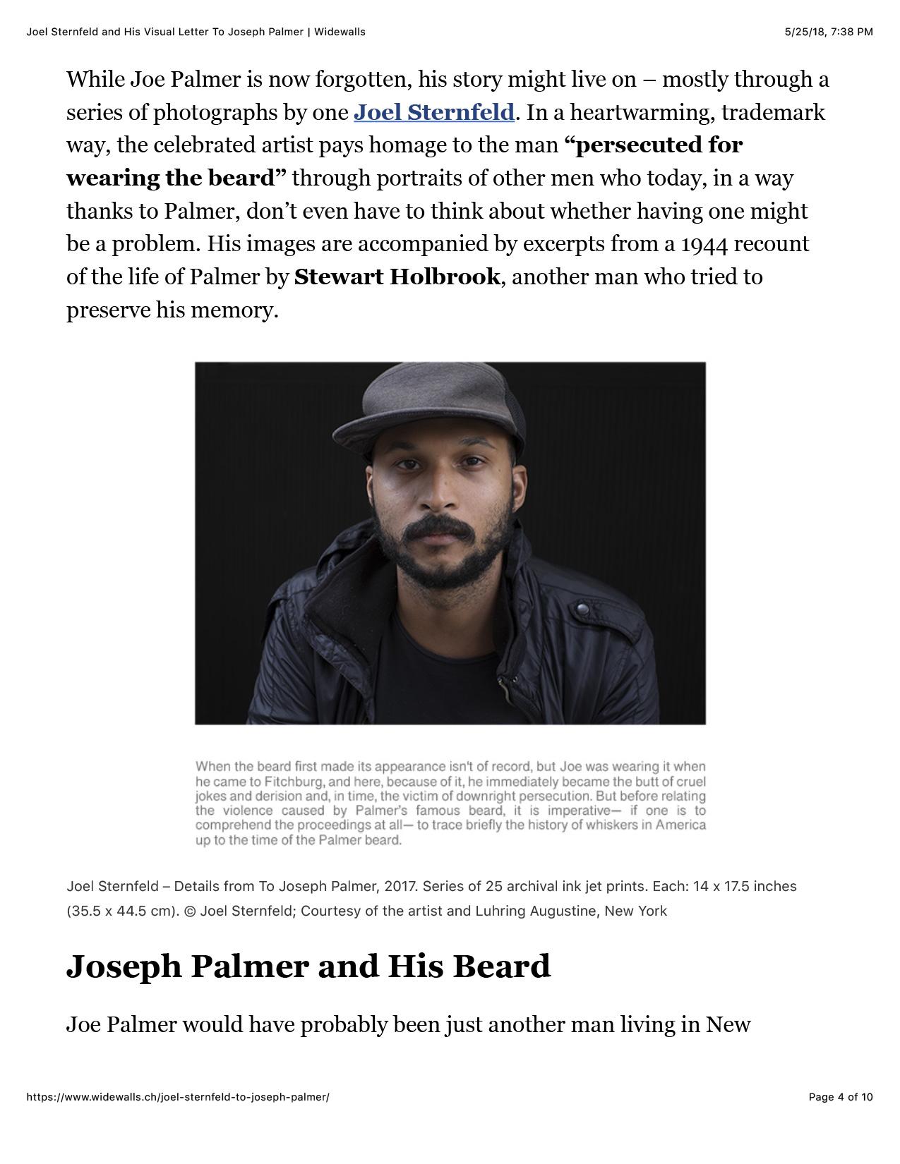 Joel-Sternfeld-and-His-Visual-Letter-To-Joseph-Palmer-_-Widewalls-4.jpg